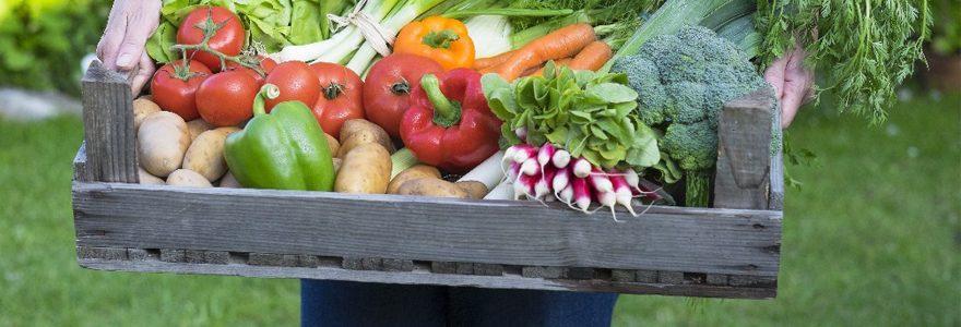 Alimentation naturelle : Livraison de produits bio en entreprise
