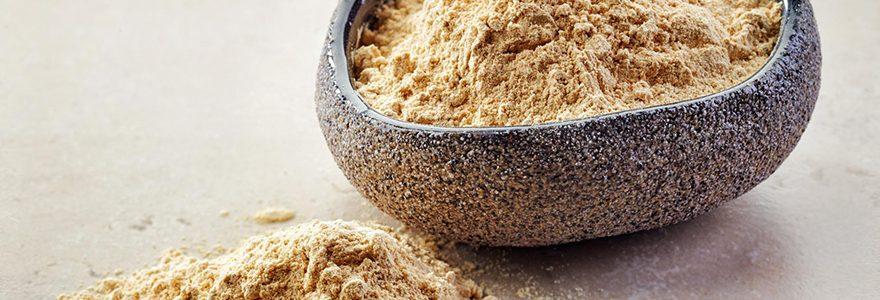 Compléments alimentaires naturels : Les bienfaits du Maca du Pérou